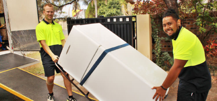 MiniMovers Removalists moving a fridge